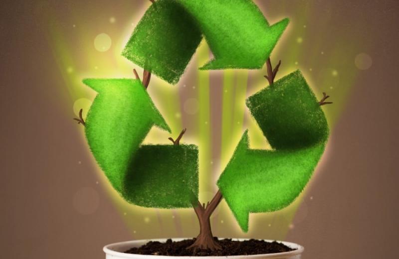 Екологічно чиста упаковка стає обов'язковим атрибутом