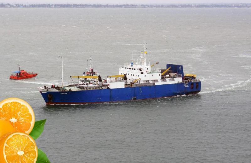 В Одесі пропонують завантажувати турецьку «цитрусову лінію» українським експортом