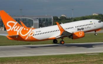 SkyUp запускає нову послугу з перевезення тварин